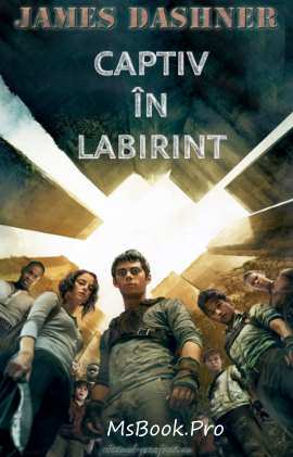 Captiv în labirint de James Dashner descarcă online gratis .pdf